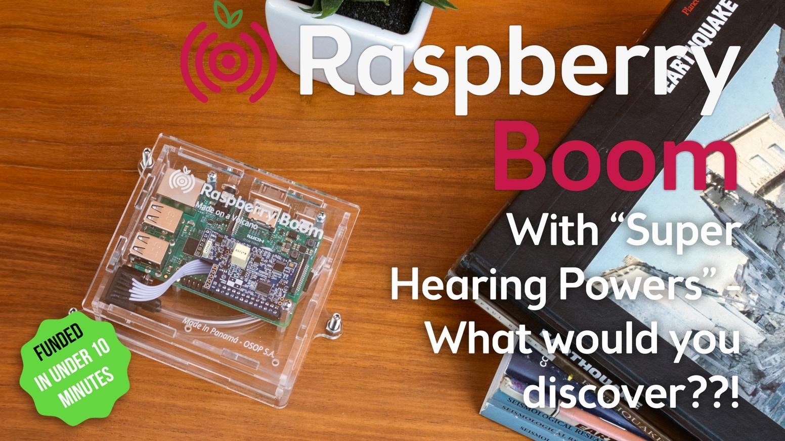 超低周波音で自然現象を感知「Raspberry Boom」
