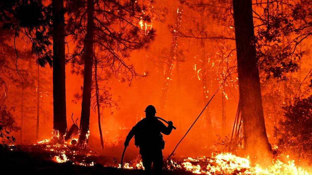 山火事の経路をリアルタイムで予測